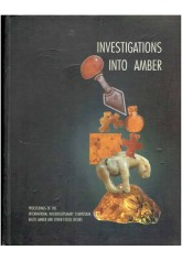 Invetigations into Amber - Śladami bursztynu
